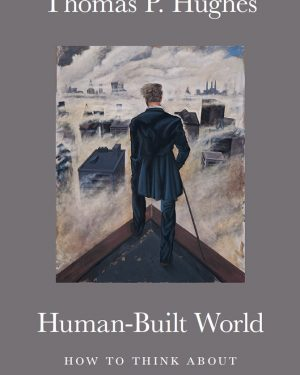 human built world how to think about technology and culture
